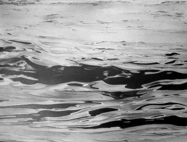 Toń wodna I 2012r.