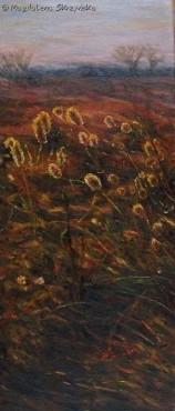 Pejzaż z trawami