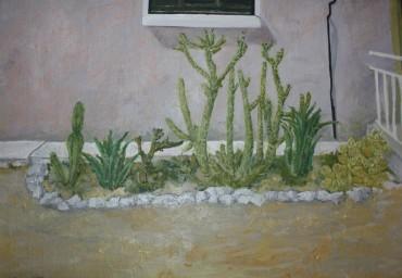 Cypryjski ogródek z kaktusami