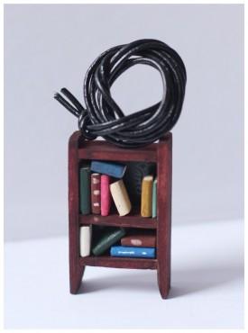 Wisior biblioteczka II
