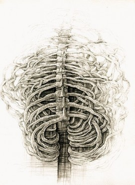 Kręgosłup, grafika Zenona Dyrszki