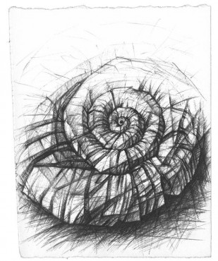 Ślimak - grafika Z. Dyrszki w antyramie