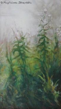 Pejzaż z ostami i mgłą