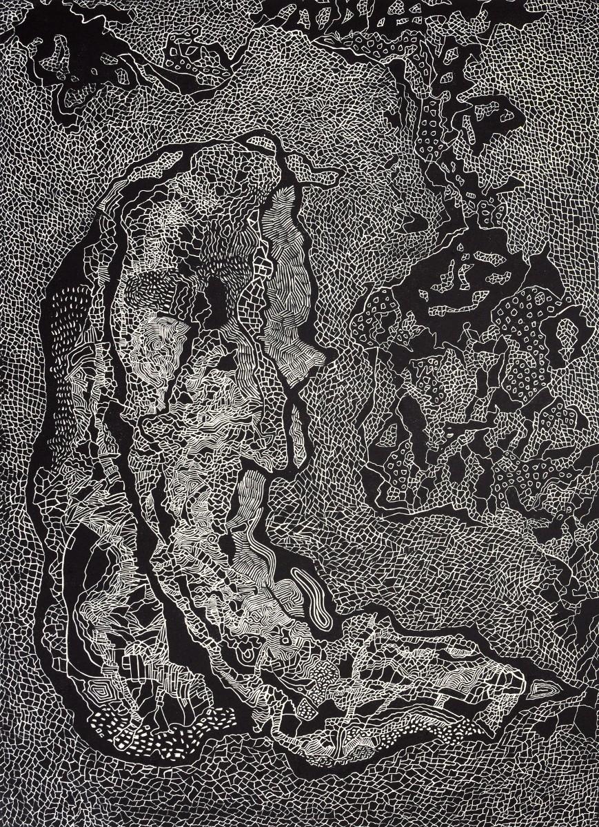 Figura XV