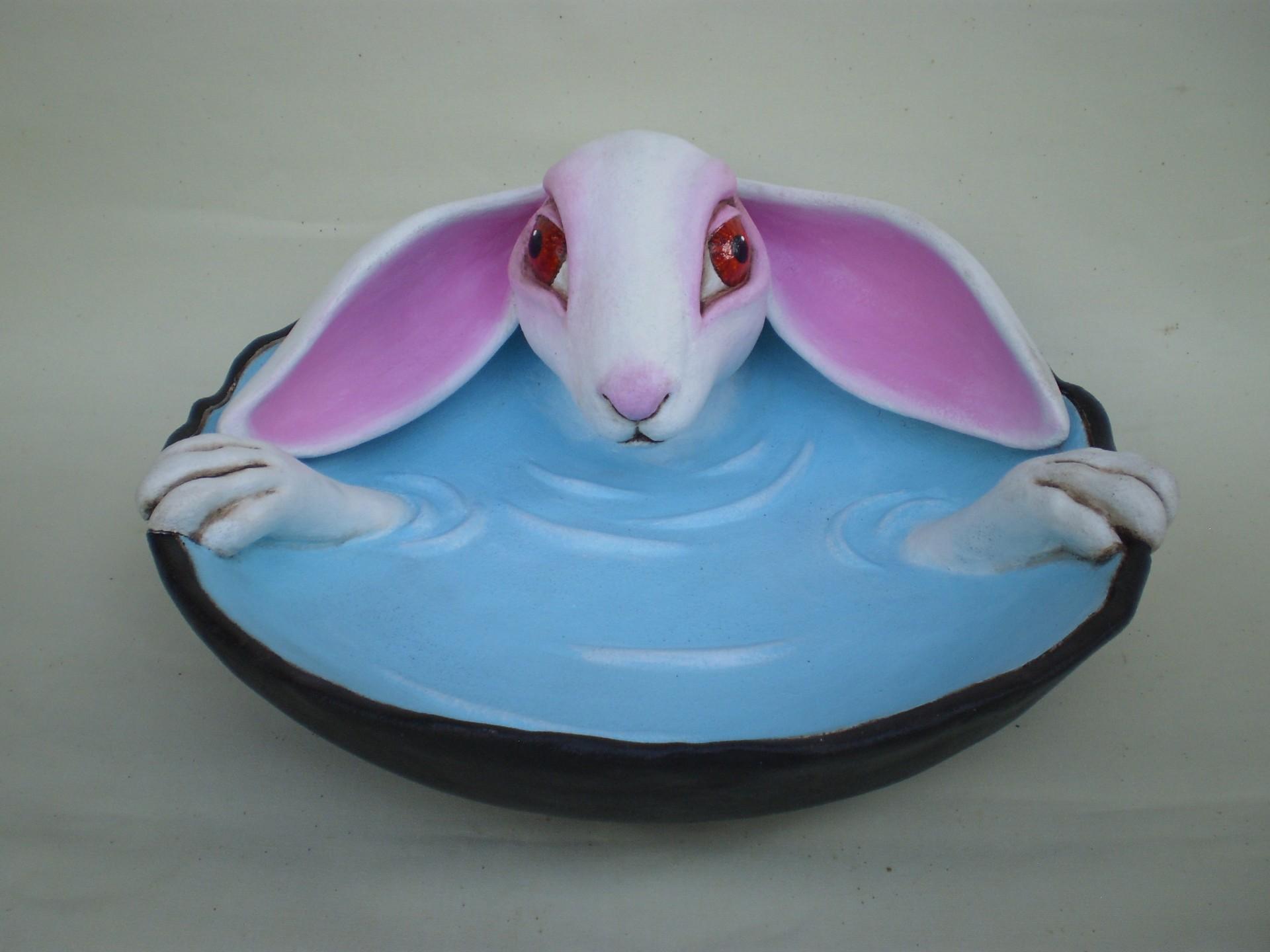 królik w kąpieli