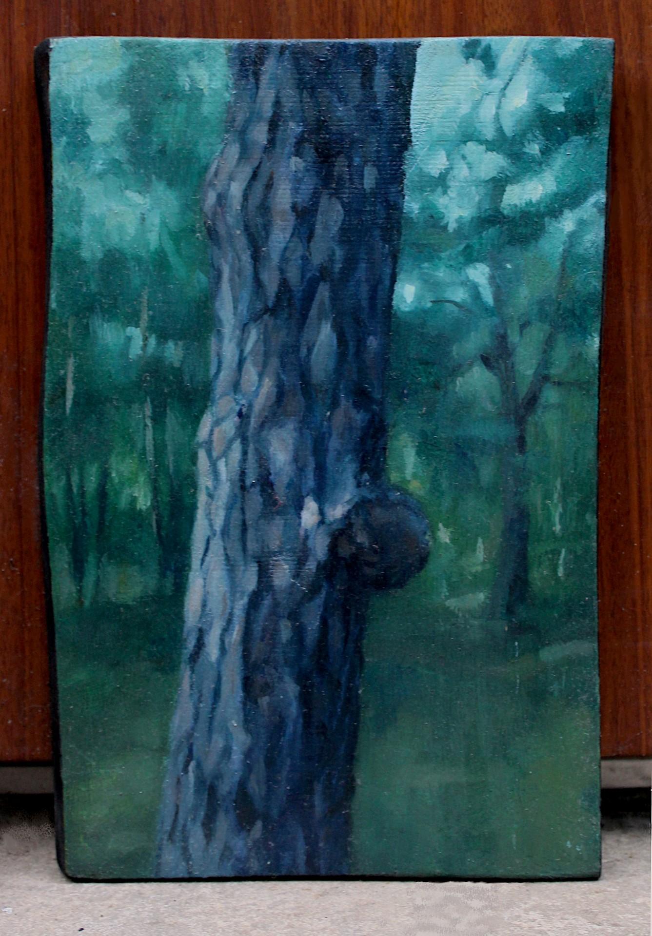Drzewne osobliwości III