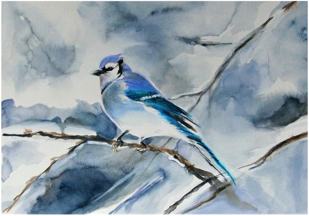 Modrosójka- niebieski ptak